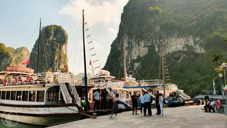 Junks in Ha Long bay