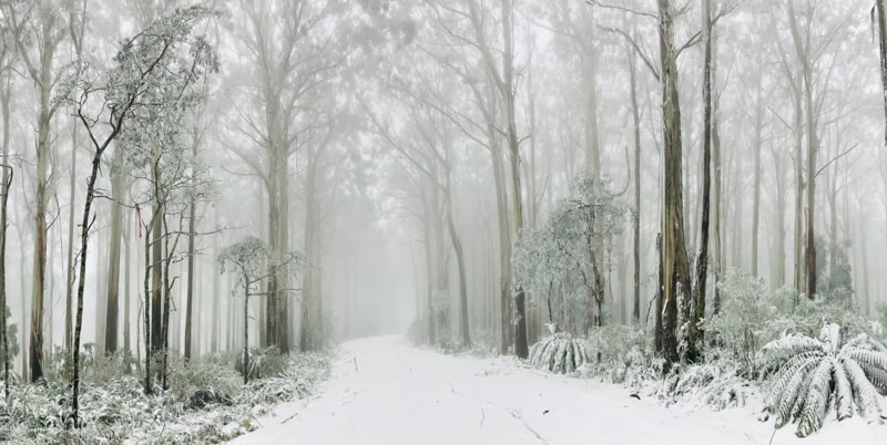 winter in australia
