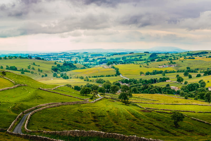 Yorkshire Up View
